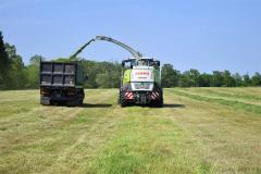 収穫が始まった一番牧草。今年は平年並みの出来で推移(幕別町新和で)