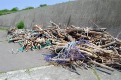 流木が巻き付いた沖網