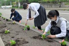 花壇に花苗を植える生徒