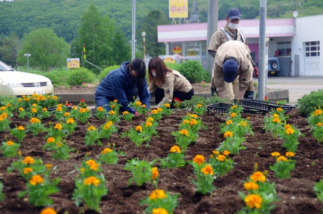 「花と緑いっぱいのまちづくり」始まる 浦幌