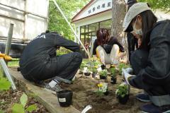 星槎高生 双葉幼稚園の園庭や花壇を整備