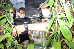 試験栽培するバニラの生育状況を確認する中川社長(右)ら「十勝バニラプロジェクト」のメンバー