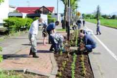 協力して苗を植える住民