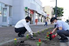 花壇に花を植える参加者