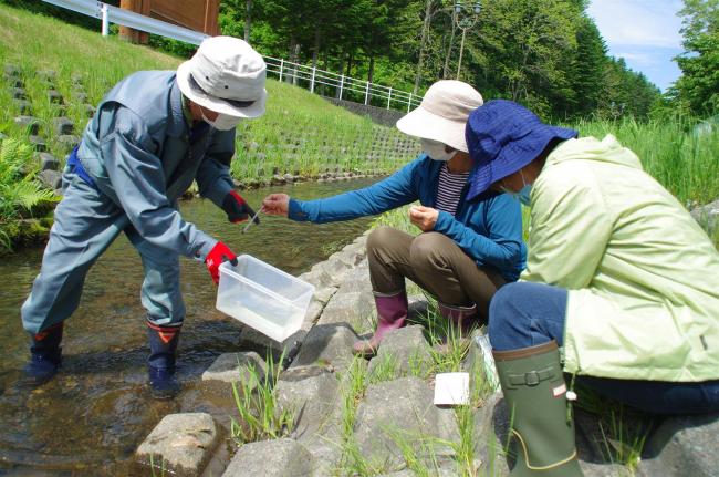 浦幌川などで水質調査