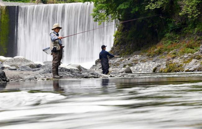 心躍るヤマメの夏 十勝で渓流釣り解禁