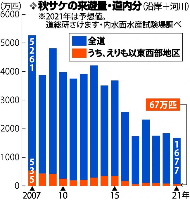 秋サケさらに減少 67万匹 昨年下回る 試験場が来遊予測 海水温が影響