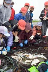 水揚げされた魚を観察する子どもたち