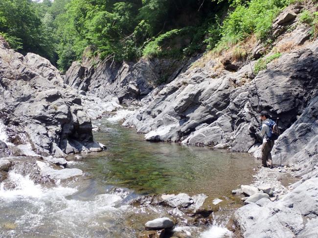 旅の窓から(18)「渓流釣り 釣れなくても、心洗われる沢」