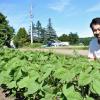 農に向き合う~農業経営部会会員紹介(6)「さとう農場 土分析し収量、品質安定」