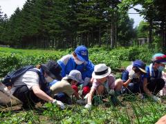 帯広農高の生徒と参加した児童が一緒に取り組む草取り作業