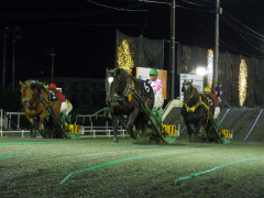 圧倒的な走りで3歳馬重賞路線の1冠目を勝ち取ったイオン号(中央)