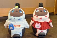 飲食店や美容室で癒しのロボット導入 店で愛される看板に 4