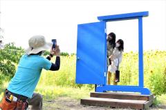 ひまわり畑を瀬にドアを使って写真を撮る来園者