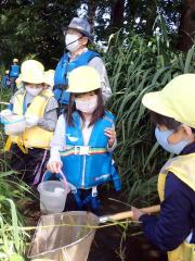 機関庫の川で魚やザリガニを探す帯広豊成小の児童。中央後ろが石垣さん
