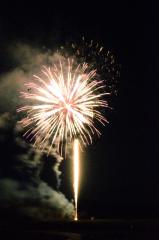 大樹の夜空を焦がした花火の大輪