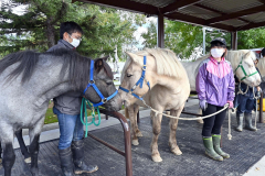 完成した馬の係留場(13日、午前10時ごろ。帯広畜産大学)