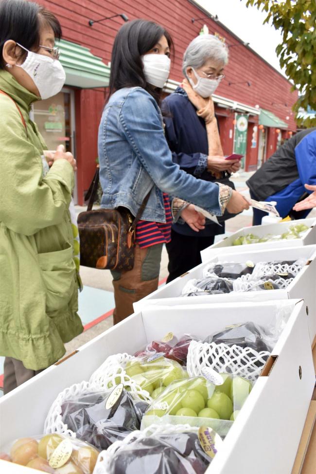 福島県産のブドウを販売 幕別の高木さん