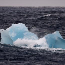 氷山が次々と現れるも、景色は単調なまま