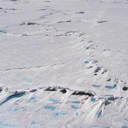 昭和基地付近の海氷。パドルと呼ばれている水たまりが点在している。