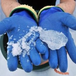 穴を掘るとザラメ状の雪(左)から氷に変わっていく(右)