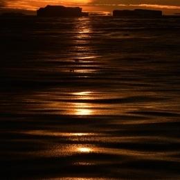 しらせからの朝日と氷山 (2)