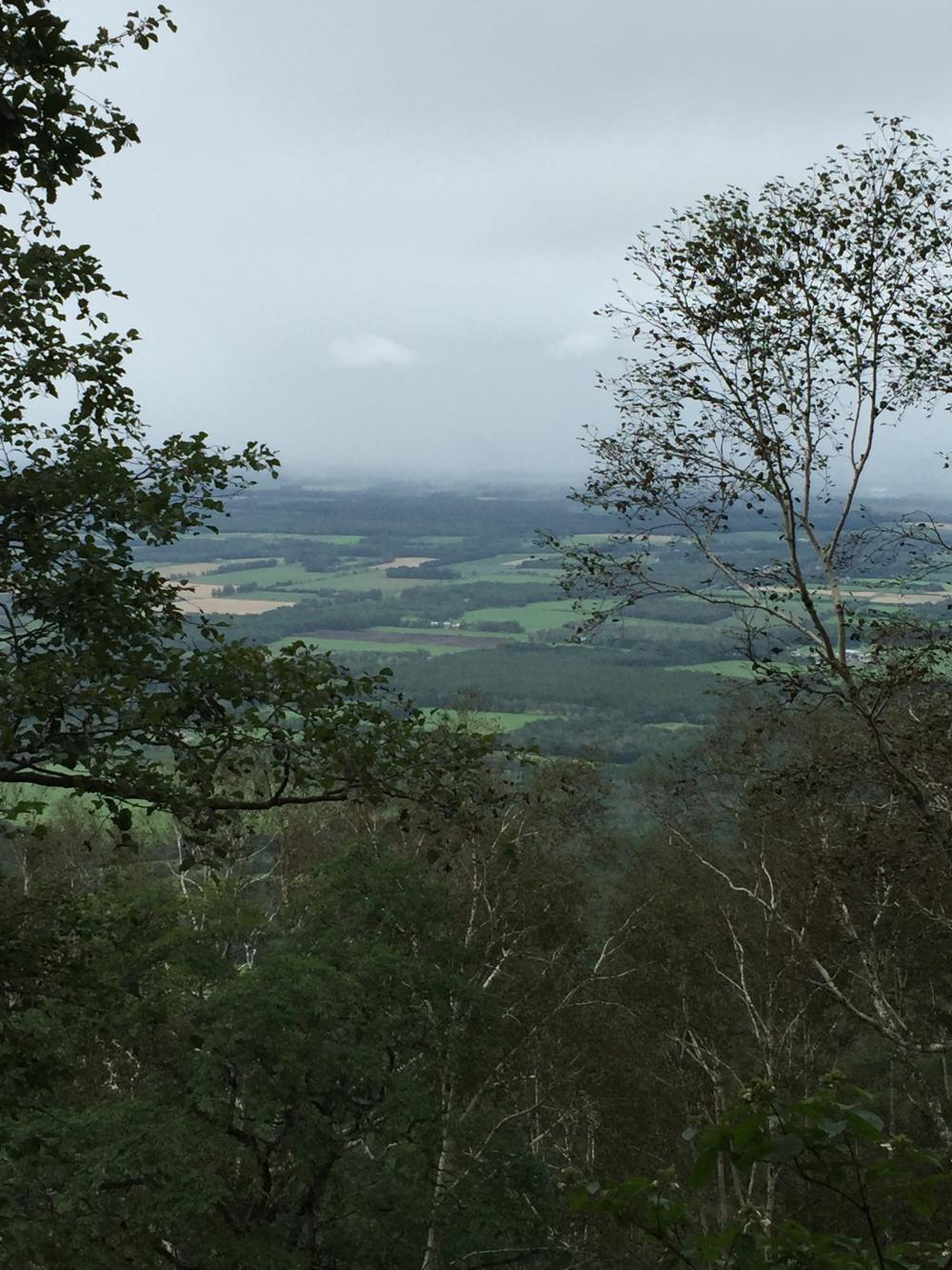 剣山。途中景色