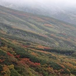 中岳紅葉。モヤがかかり視界良好ではなかった。