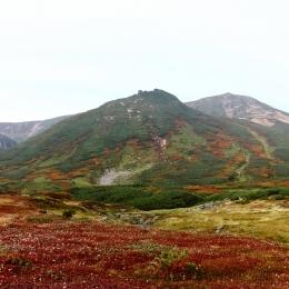 裾合平からの眺め。大塚の紅葉