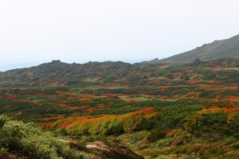 裾合平からの眺め。当麻岳西付近の紅葉